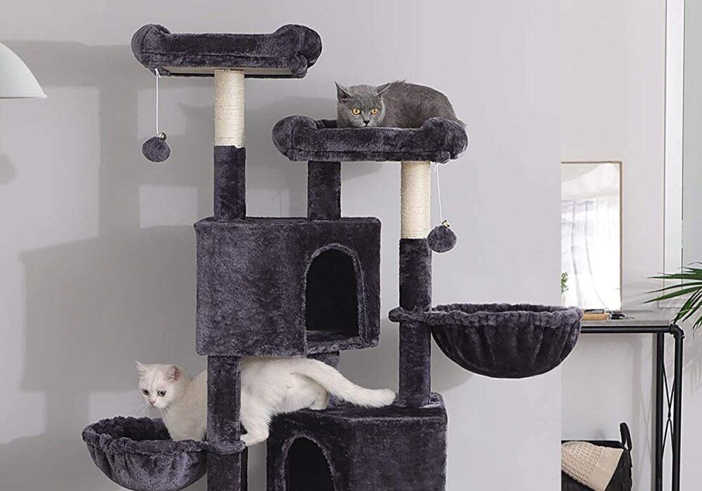 Katzenbäume
