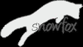 Snowfox Katzenbetreuung und Fotografie