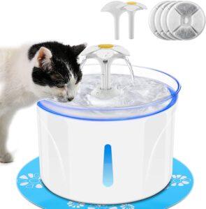 Wasserspender 2.5L