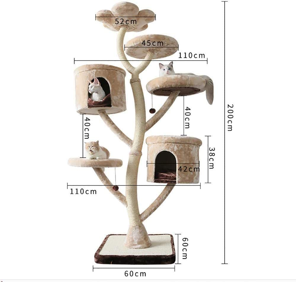 ZouYongKang Katzenbaum 2m